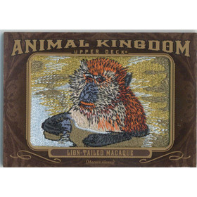 2013 Goodwin Champions Lion-Tailed Macaque Animal Kingdom Patches #AK-273