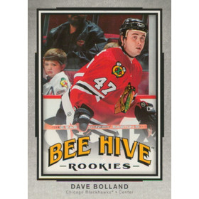 2006-07 BEE HIVE - DAVE BOLLAND #113 ROOKIE