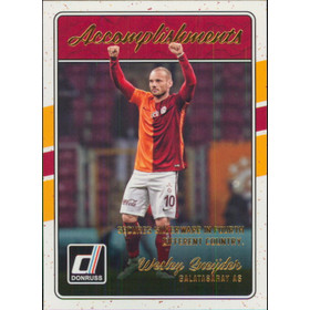 2016-17 Donruss Soccer - Wesley Sneyder Accomplishments #13