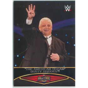 2015 WWE Road to Wrestlemania - Dusty Rhodes Hall of Fame #19