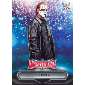 2016 WWE Road to WrestleMania - Sting Roster #4
