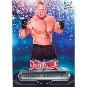 2016 WWE Road to WrestleMania - Brock Lesnar Roster #5