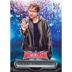 2016 WWE Road to WrestleMania - Dean Ambrose Roster #9