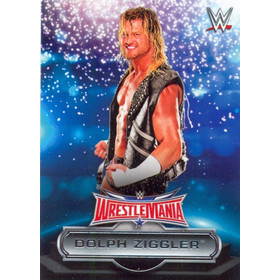 2016 WWE Road to WrestleMania - Dolph Ziggler Roster #13