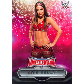 2016 WWE Road to WrestleMania - Brie Bella Roster #25
